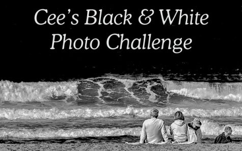 Black and white photos