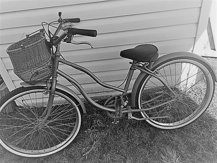 Cee's black and white photo challenge ladies bike